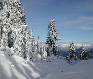 paisajes nevados canadajpg
