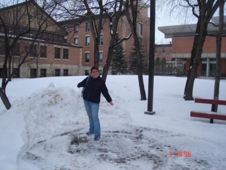 vacaciones en la nieve: